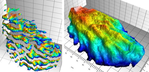 Conchology  Topography  Measurement  Using 3D Profilometry
