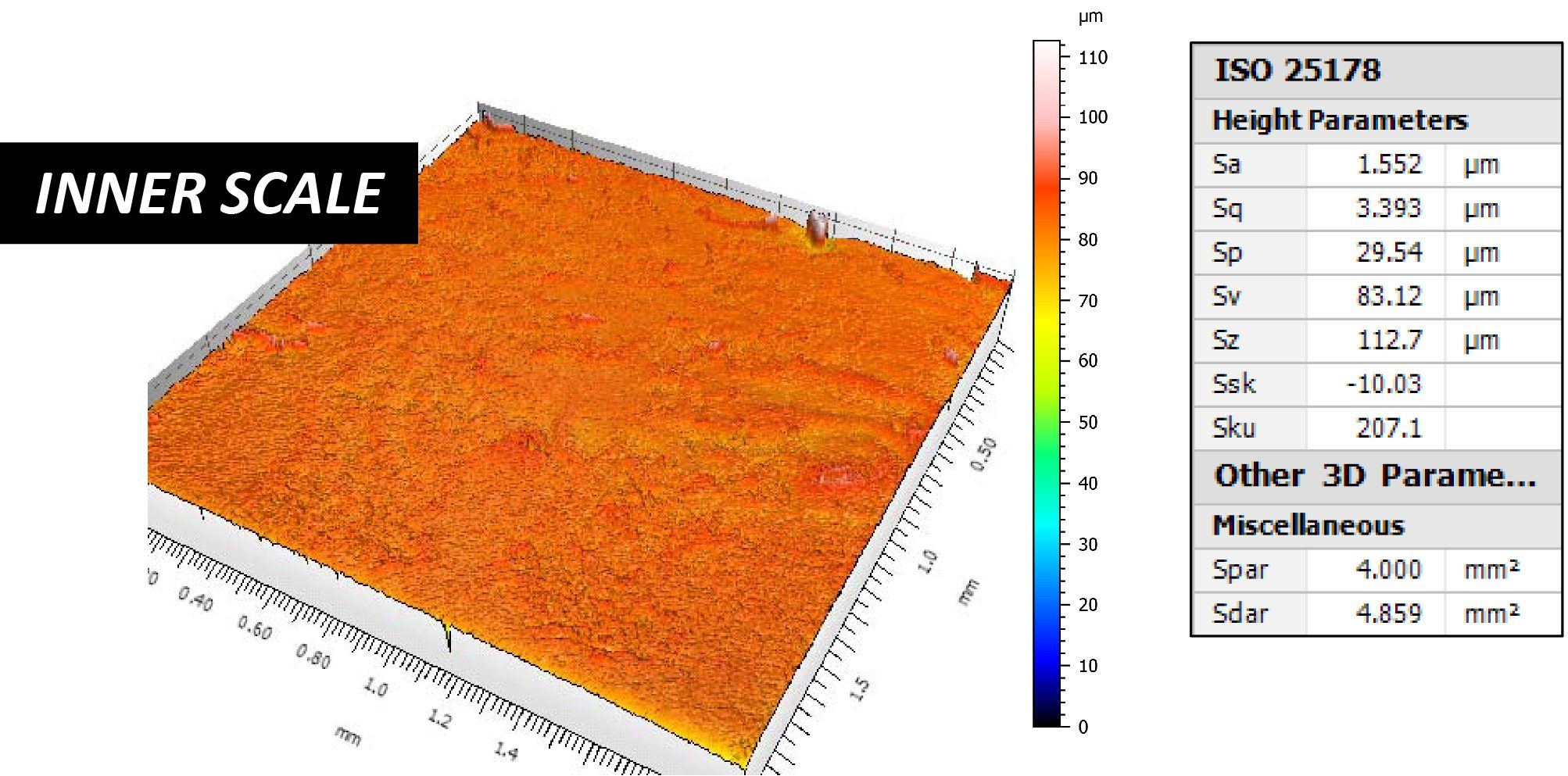 Fish Scale Profilometer 3D Scanning