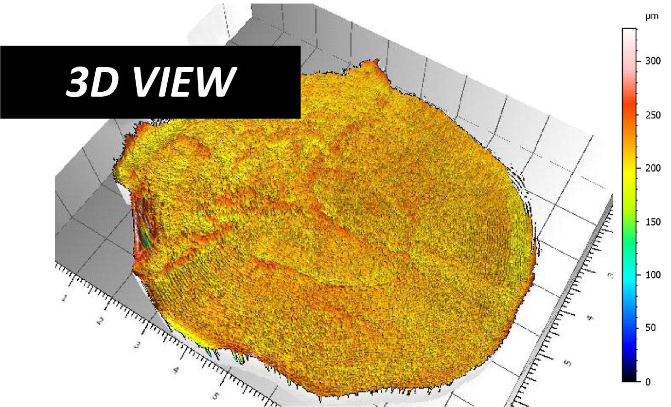 Fish Scale Scan 3D View Profilometer