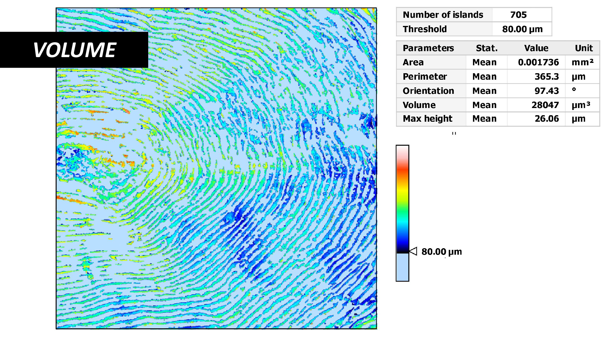Fish Scale Scan Volume 3D Profilometer